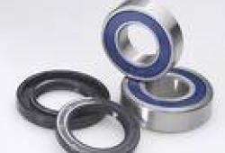 Front Wheel Bearing Kit Honda TRX350 4x4